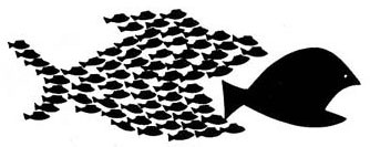 pez_grande_pez_pequeno