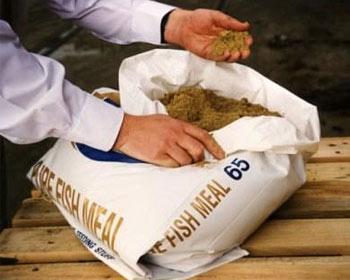 harina-pescado