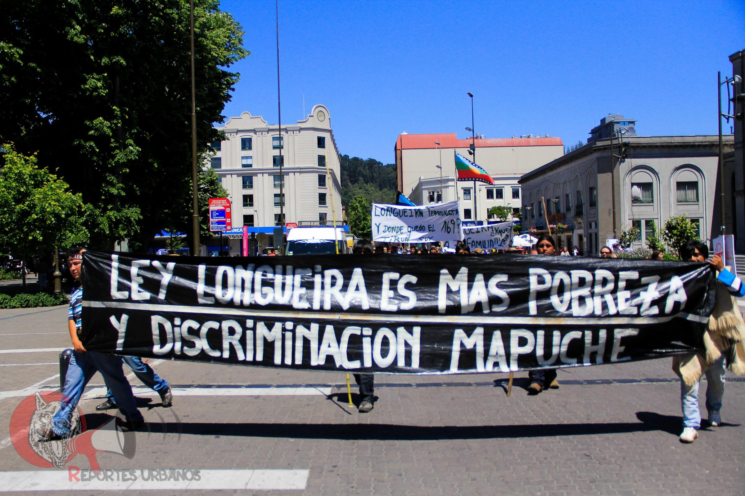 mapuche-leylongueira