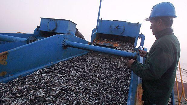 pesca-pelagica