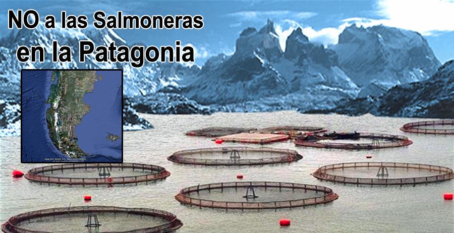 no-salmoneras-patagonia